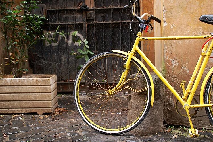 bicyclesarasota photographer.jpeg